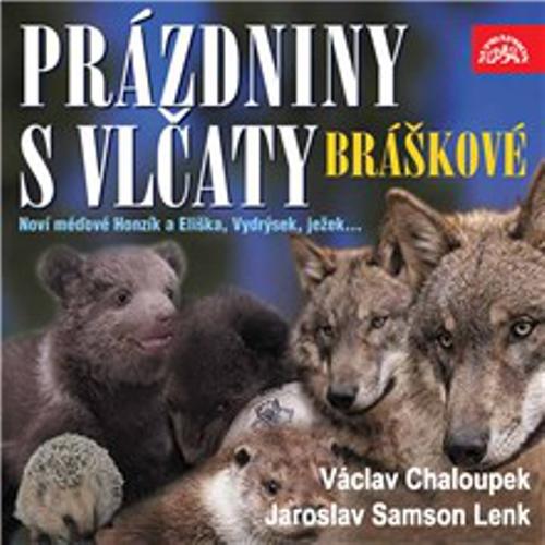 Písničky a příběhy zvířátek z večerníčků Bráškové. Prázdniny s vlčaty