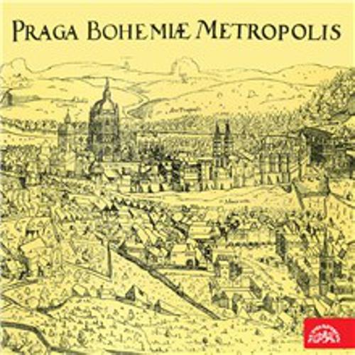 Au revoir, Prague - Jaromír Čermák (Audiobook)