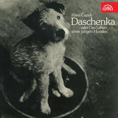Daschenka oder das Leben eines jungen Hundes - Karel Čapek (Hoerbuch)