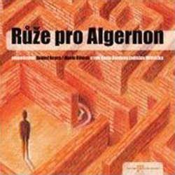 Audiokniha Růže pro Algernon - Daniel Keyes - Ladislav Mrkvička