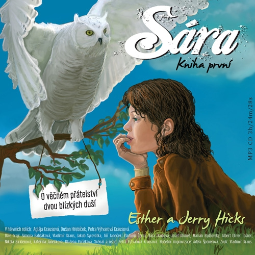 Sára - Kniha první - Jerry Hicks (Audiokniha)