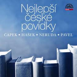Audiokniha Nejlepší české povídky - Jan Neruda - Vojtěch Dyk