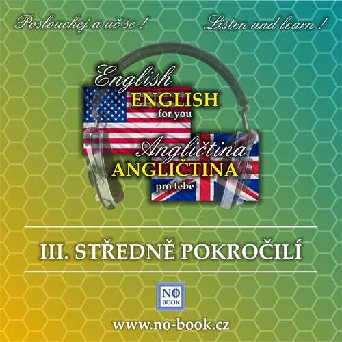 Audiobook Angličtina pro tebe 3 - středně pokročilí - Richard Ludvík - Richard  Ludvík