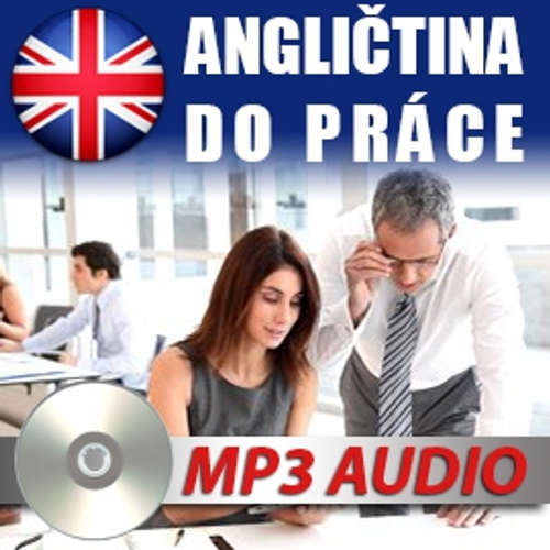 Audiobook Angličtina do práce - Various authors - Rôzni Interpreti