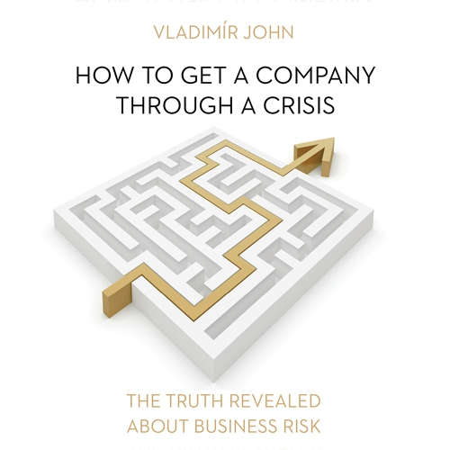 Audiobook How to get a company through a crisis (EN) - Vladimír John - Julie Dawn Cole