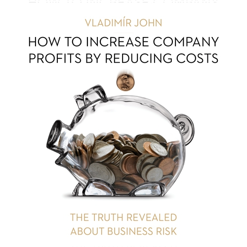 How to increase company profits by reducing costs (EN) - Vladimír John (Audiobook)