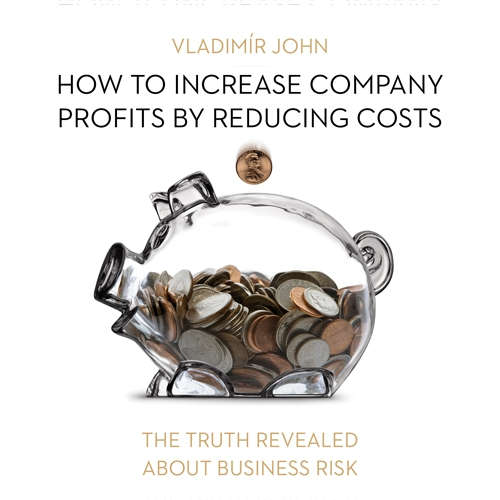 Audiobook How to increase company profits by reducing costs (EN) - Vladimír John - Rupert Degas