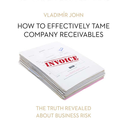 Audiobook How to effectively tame company receivables (EN) - Vladimír John - Sheylley Blond