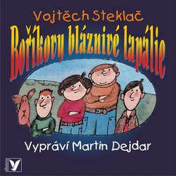 Audiokniha Boříkovy bláznivé lapálie - Vojtěch Steklač - Martin Dejdar