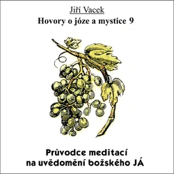 Hovory o józe a mystice 9 - Jiří Vacek (Audiokniha)