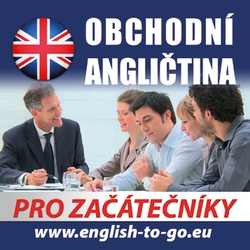 Obchodní angličtina pro začátečníky - Rôzni Autori (Audiokniha)