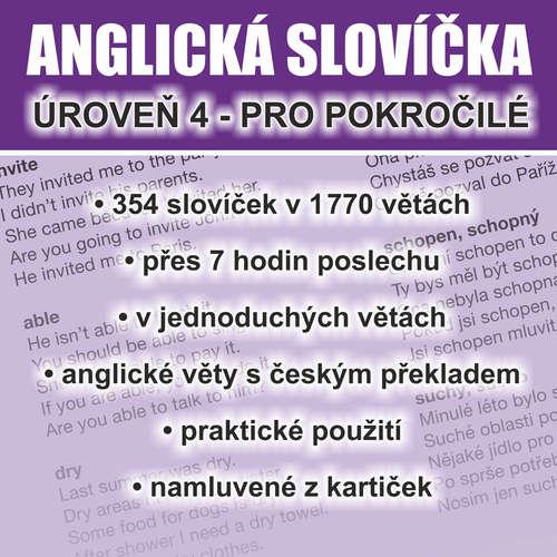 Audiobook Anglická slovíčka - úroveň 4 pro pokročilé - Richard Ludvík - Richard  Ludvík