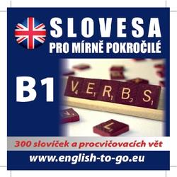 Angličtina - slovesa pro mírně pokročilé - Authors Various (Audiokniha)