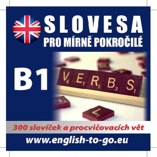Angličtina - slovesa pro mírně pokročilé - Různí Autoři (Audiokniha)
