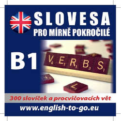 Audiokniha Angličtina - slovesa pro mírně pokročilé - Various authors - Rôzni Interpreti