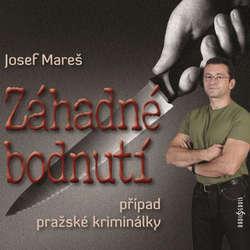 Audiokniha Záhadné bodnutí - Josef Mareš - David Novotný