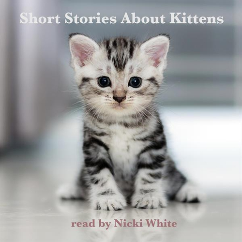 Short Stories About Kittens (EN) - Johnny Gruelle (Audiobook)