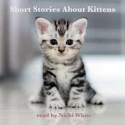 Audiobook Short Stories About Kittens (EN) - Johnny Gruelle - Nicki White