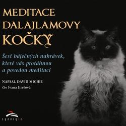 Meditace dalajlamovy kočky - David Michie (Audiokniha)