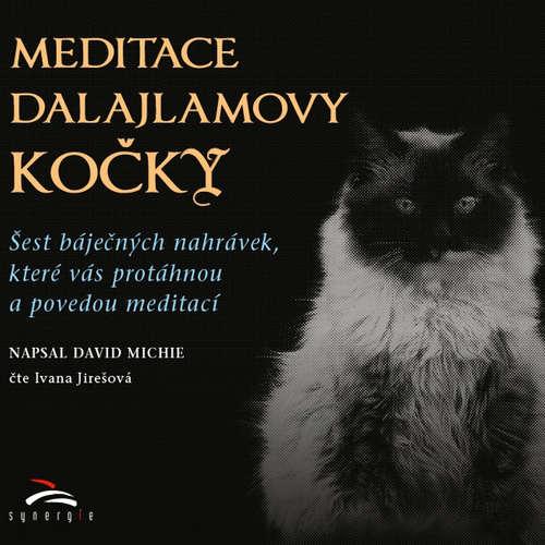 Audiokniha Meditace dalajlamovy kočky - David Michie - Ivana Jirešová