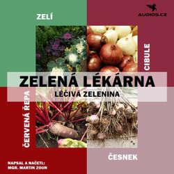 Audiokniha Léčivá zelenina - Martin Zoun - Michal Gulyáš
