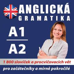Audiokniha Anglická gramatika A1, A2 - Various authors - Rôzni Interpreti