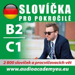 Audiokniha Německá slovíčka B2-C1 - Rôzni autori -  Různí