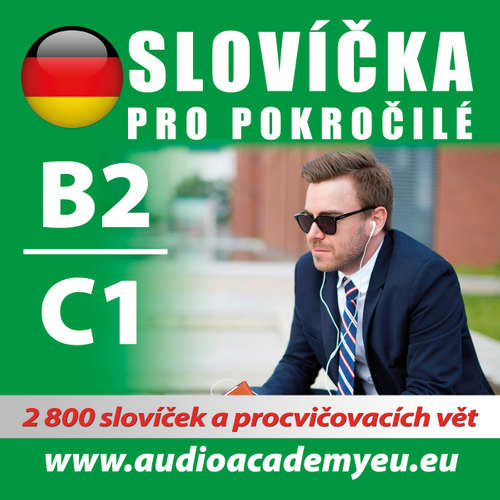 Audiokniha Německá slovíčka B2-C1 - Různí autoři -  Různí