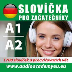 Audiokniha Německá slovíčka A1-A2 - Various authors -  Různí