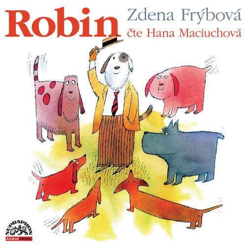 Audiokniha Robin - Zdena Frýbová - Hana Maciuchová