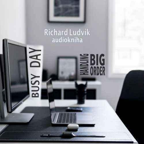 Audiobook Busy Day - Handling Big Order - Richard Ludvík - Richard  Ludvík