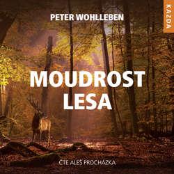 Audiokniha Moudrost lesa - Peter Wohlleben - Aleš Procházka