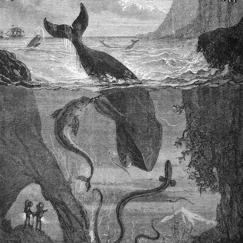 Audiokniha Dvacet tisíc mil pod mořem - Jules Verne - František Němec