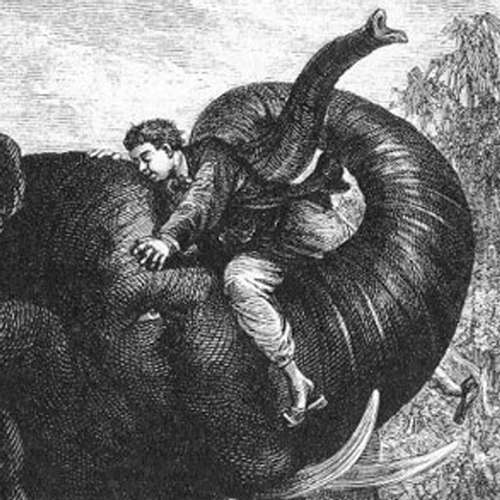 Audiokniha Cesta kolem světa za osmdesát dní - Jules Verne - Rudolf Hrušínský