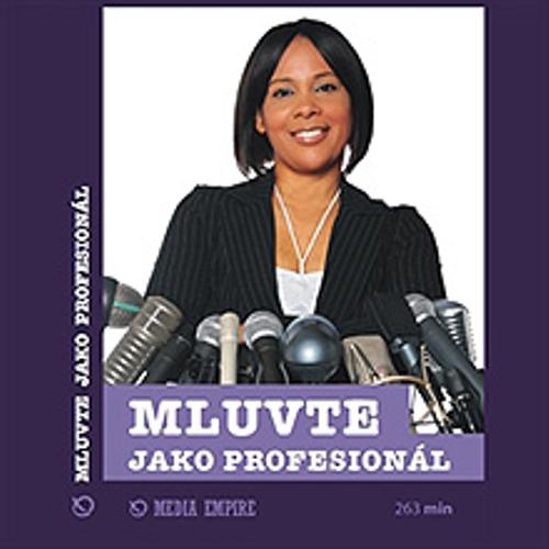 Mluvte jako profesionál - Mike Bechtle (Audiokniha)