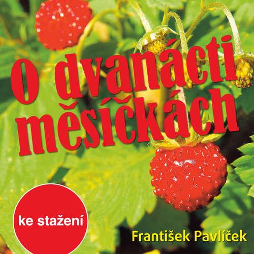 Audiokniha O dvanácti měsíčkách - Božena Němcová - Ladislav Županič