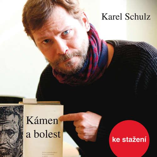 Audiokniha Kámen a bolest - Karel Schulz - Marek Holý