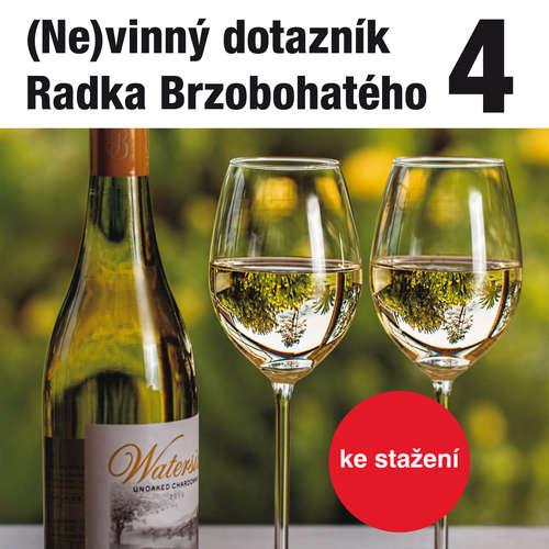 Audiokniha (Ne)vinný dotazník Radka Brzobohatého 4. - Radoslav Brzobohatý - Radoslav Brzobohatý