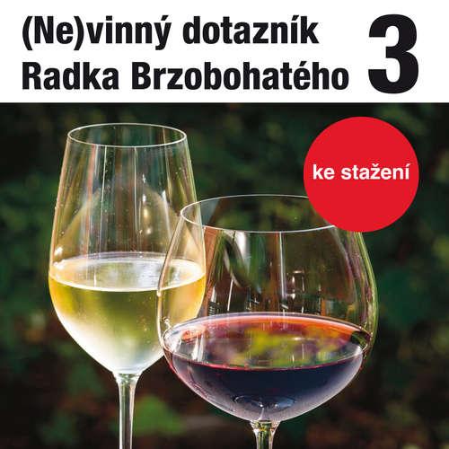 Audiokniha (Ne)vinný dotazník Radka Brzobohatého 3. - Radoslav Brzobohatý - Radoslav Brzobohatý
