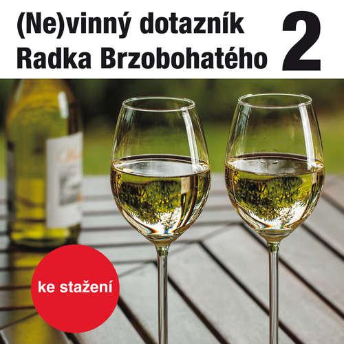 Audiokniha (Ne)vinný dotazník Radka Brzobohatého 2. - Radoslav Brzobohatý - Radoslav Brzobohatý