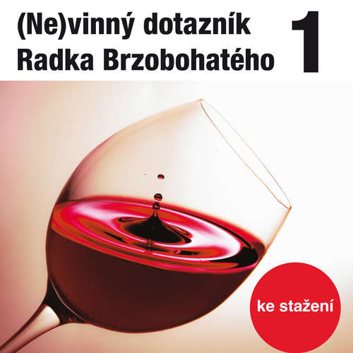Audiokniha (Ne)vinný dotazník Radka Brzobohatého 1. - Radoslav Brzobohatý - Radoslav Brzobohatý