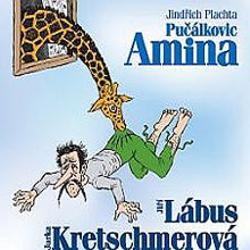 Pučálkovic Amina - Jindřich Plachta (Audiokniha)