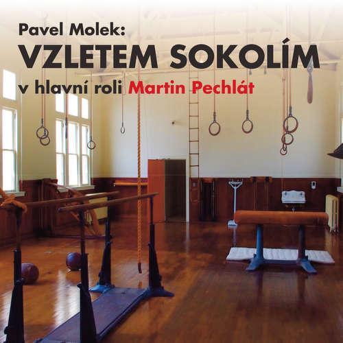 Audiokniha Vzletem sokolím - Pavel Molek - Kajetán Písařovic