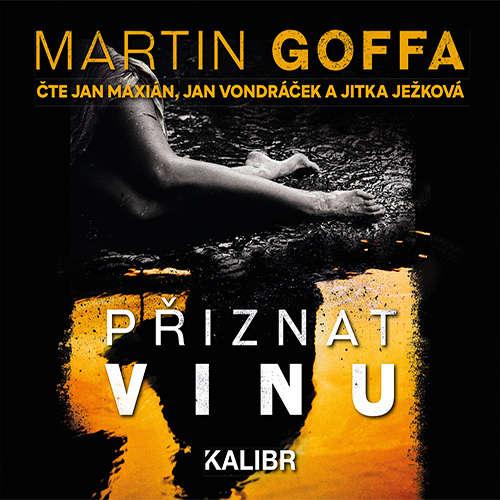 Audiokniha Přiznat vinu - Martin Goffa - Jitka Ježková