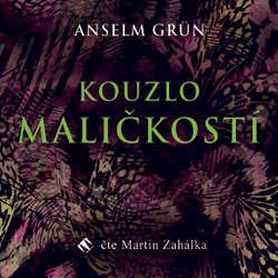 Audiokniha Kouzlo maličkostí - Anselm Grün - Martin Zahálka
