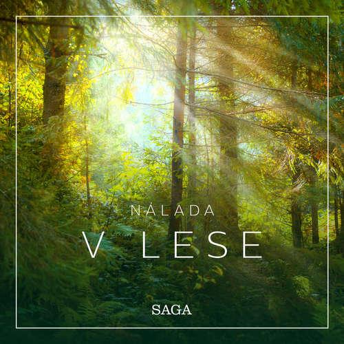 Audiokniha Nálada – V lese - Rasmus Broe - Rasmus Broe