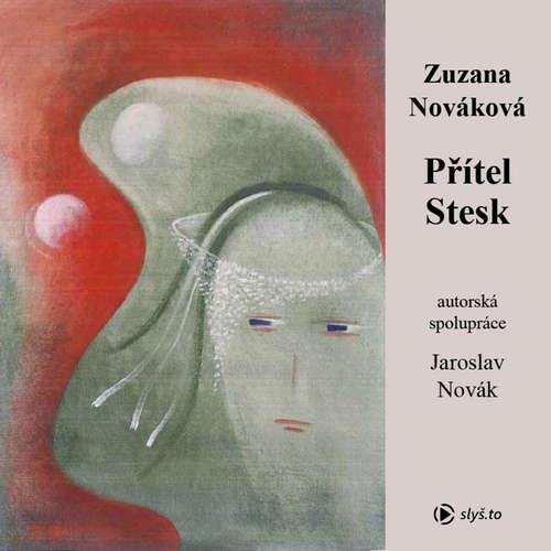 Audiokniha Přítel stesk - Zuzana Nováková - Kateřina Rýznarová