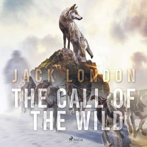 Audiobook The Call of the Wild (EN) - Jack London - Mark F Smith