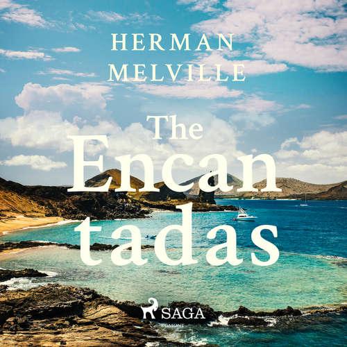 Audiobook The Encantadas (EN) - Herman Melville - James K White
