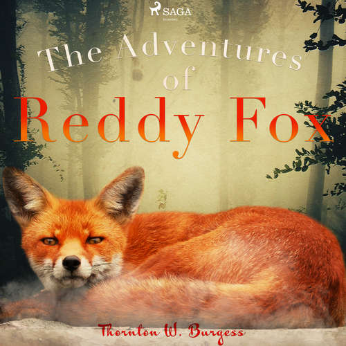 Audiobook The Adventures of Reddy Fox (EN) - Thornton W. Burgess - John Lieder